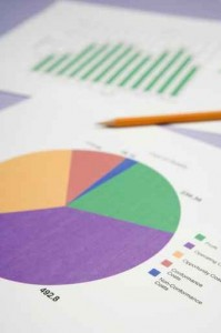 pie chart with business information